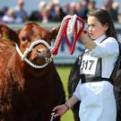 The Balmoral Show (Kelvin Boyes / Press Eye)