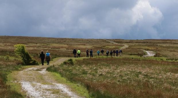 Some of the participants in last year's Belfast Hills Walking Festival