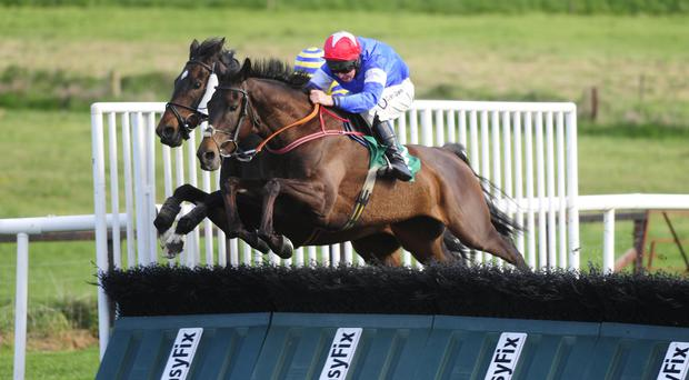 Up and over: Foxearth, with Andrew Lynch aboard, jumps the final hurdle alongside Prince Garyantle on the way to victory at Downpatrick last night
