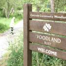A 15 year old girl has died in woodland in the Corcrain area of Portadown