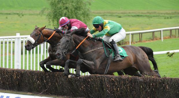 Raising stakes: Western Goose (near) can pose a major danger tonight at Down Royal