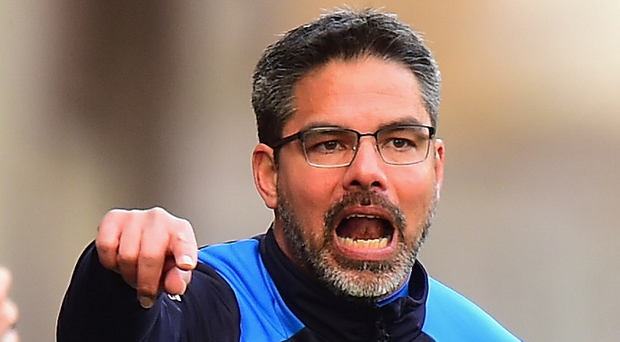 Top boss: Wells says David Wagner is heading for the very top. Photo: Tony Marshall/Getty Images
