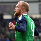What a feeling: Liam Boyce enjoys the moment after scoring his first ever goal for Northern Ireland at Windsor Park last night