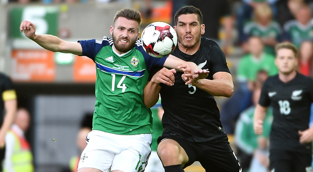 Squaring up: Stuart Dallas wrestles with Michael Boxall at Windsor Park on Friday during the 1-0 win over New Zealand