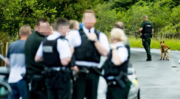 Police arrest four people after creeper burglary in Lisburn. (Photo by Kevin Scott / Belfast Telegraph)