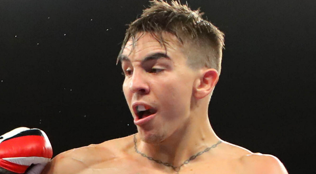 In the frame: Michael Conlan has some big fights to look forward to