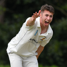 Call-up: Robert McKinley is in the Knights' T20 squad