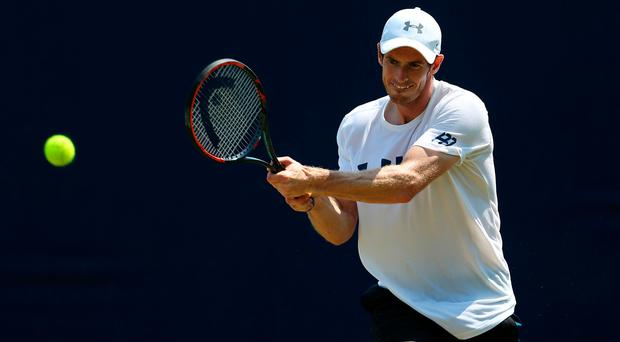 More like it: Andy Murray believes he is hitting form
