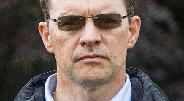Upbeat: Aidan O'Brien hopes Highland Reel is on song