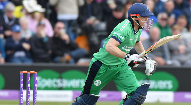 On strike: Niall O'Brien will resume batting for the Warriors but Lightning are in control