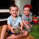 Dylan (left) and Matthew James and their home in Aigburth, Liverpool with their tortoise Rory who has returned after escaping their home on Monday. PA/PA Wire
