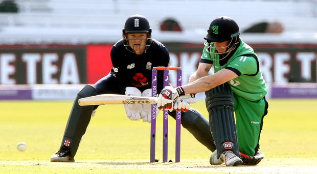 Big hitters: William Porterfield can't wait to lead Ireland into a Test