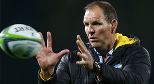 All in hand: John Plumtree loved his short stay in Ireland, but couldn't resist moving home
