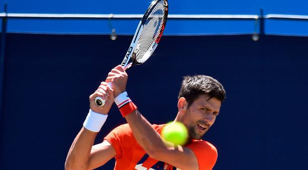Big draw: Novak Djokovic is relishing Eastbourne test