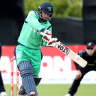Leading man: Ireland and Warwickshire's William Porterfield could be classed as an overseas player. Photo: Oisin Keniry/INPHO