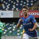 Linfield's Jordan Stewart celebrates his late, late winner at Windsor Park.