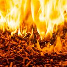 The RHI scheme was intended to encourage the use of renewable fuels, such as wood pellets, instead of fossil fuels.