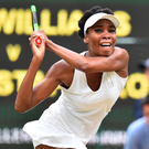 Moving on up: Venus Williams is hungry to clinch a sixth singles title at Wimbledon after reaching the semi-finals