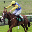 Whip hand: Caerleon Kate can win at Downpatrick today. Photo: Freddie Parkinson/Presseye