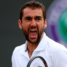 New ground: Marin Cilic. Photo: Julian Finney/Getty Images