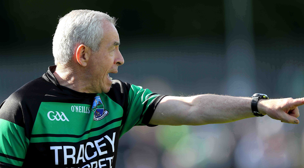 New direction: Pete McGrath has taken up the top post at Louth