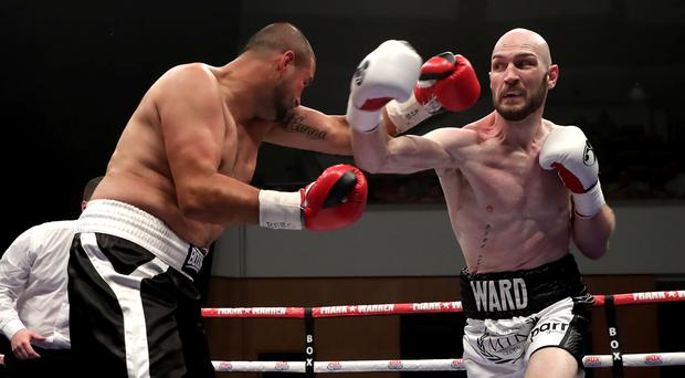 On the attack: Steven Ward on his way to victory over Istvan Orsos last month at the Waterfront Hall. Photo: William Cherry/Presseye