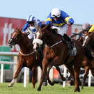 In front: Lisard Lady, with Wayne Lordan aboard, wins at Down Royal last night
