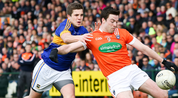 All fired up: Aidan Forker is urging Armagh to shine on the big stage at Croke Park