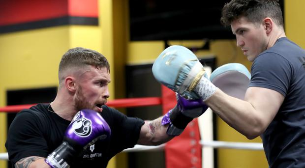 Glove affair: Shane McGuigan says a return to the World stage would draw out the best in Carl Frampton