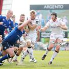 Ulster and Leinster have been drawn together in Conference B.