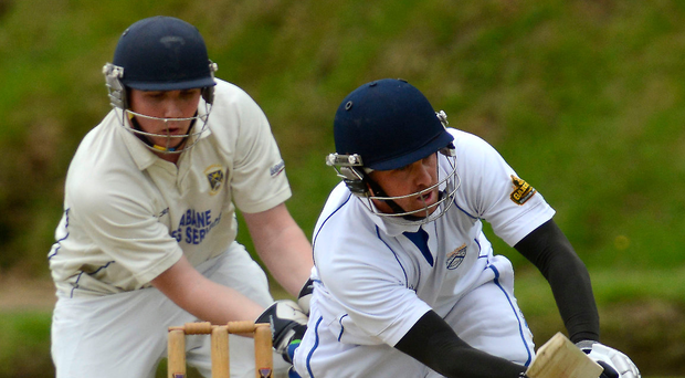 Big impact: Niall McDonnell smashed 123 not out for Brigade, including 11 sixes and six fours