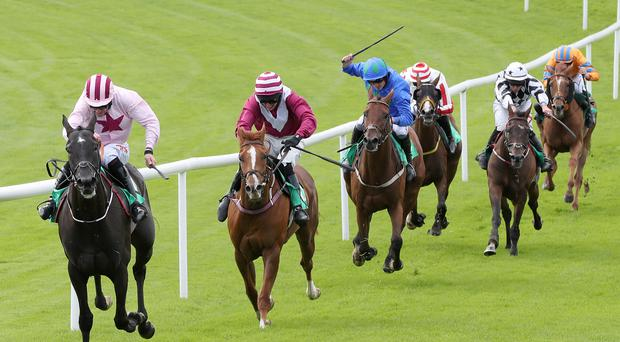 West is best: jockey Davy Russell winning ysterday's feature race at Downpatrick on Westland Row