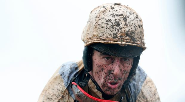 Under fire: Davy Russell appeared to strike his horse