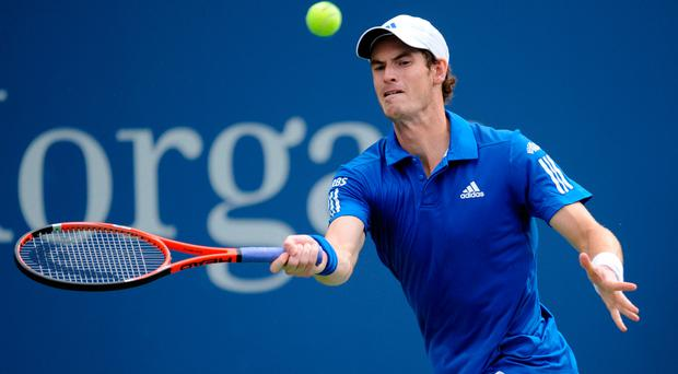 Expectation: Andy Murray should ease over first hurdle. Photo: Mehdi Taamallah/PA
