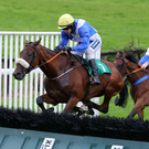 Going over: Small World, with Ruby Walsh on board, beats Tranquil Magic at Downpatrick