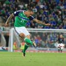 On the attack: Josh Magennis believes teams are starting to wake up to the threat Northern Ireland now pose