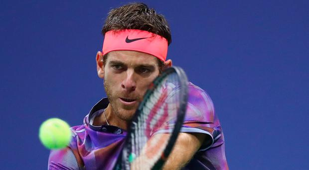 Upset: Juan Martin del Potro powers to victory over Roger Federer at the US Open in New York