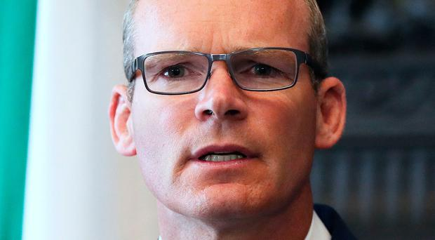 Foreign affairs minister Simon Coveney has said all material on the killings had been handed over