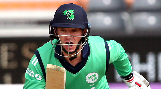 Best foot forward: William Porterfield hopes Ireland can regain the winning feeling