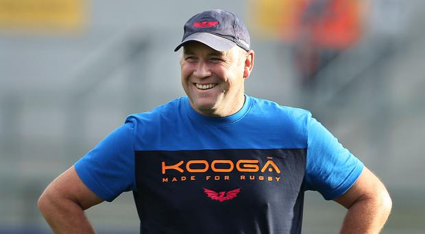 Aiming higher: Scarlets boss Wayne Pivac believes there is more to come from his champions