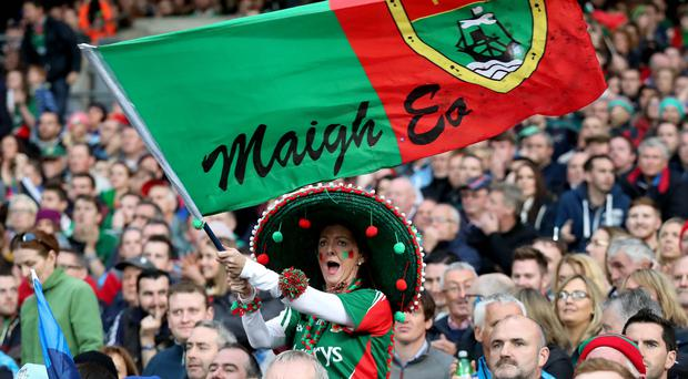 Flying the flag: Mayo fans could be leaving Croke Park in a very celebratory mood