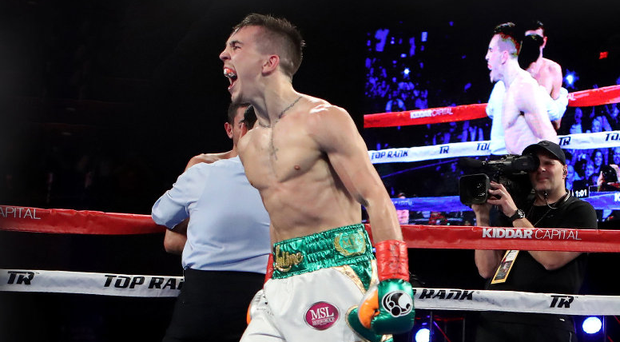 Roaring on: Michael Conlan after beating Tim Ibarra in New York. Photo: Tom Hogan/INPHO