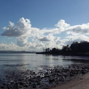 Picture taken at Jordanstown lough shore. Sent in by Valerie Mathews