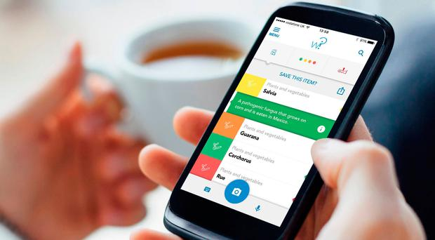 Healthy eating: the new food app