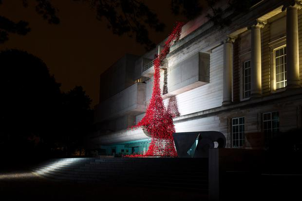 The iconic poppy sculpture Weeping Window by artist Paul Cummins and designer Tom Piper. Photo by Darren Kidd / Press Eye