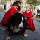 Pew pets: St Anne's Cathedral in Belfast