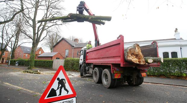 A fallen tree is cleared from a road off the Upper Newtownards Road in east Belfast as clear up begins after storm Ophelia. Picture by Jonathan Porter/PressEye