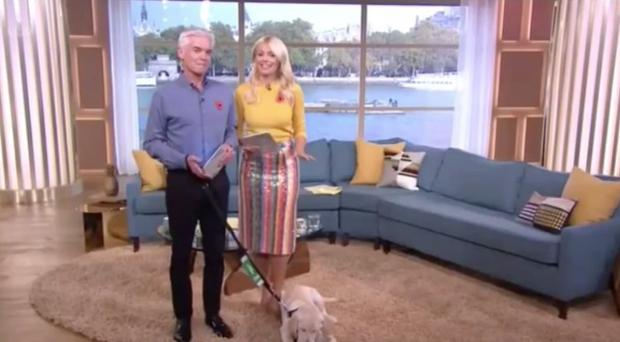 Holly Willoughby on This Morning with Phillip Schofield (ITV)