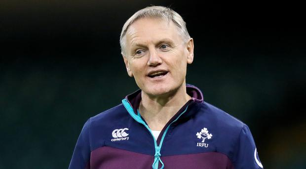 Plans: Joe Schmidt can plot Ireland's 2019 quest