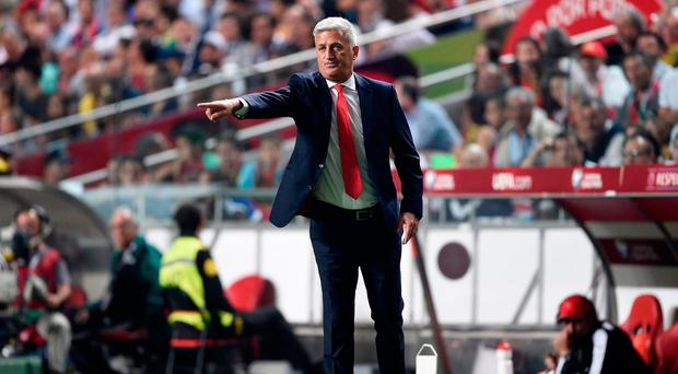 Done his homework: Switzerland manager Vladimir Petkovic nows how influential the Northern Ireland fans can be